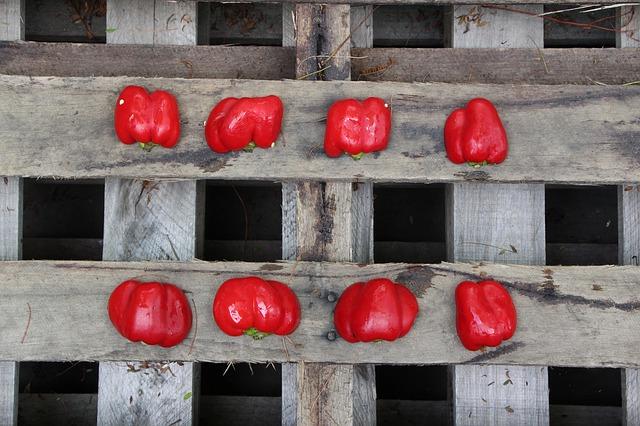 papriky na paletě